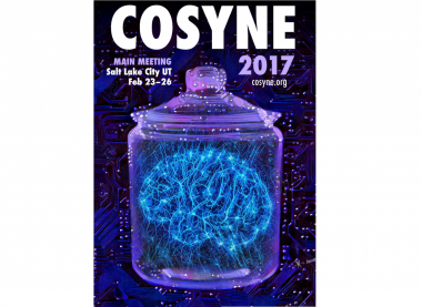 Conference Series - Cosyne