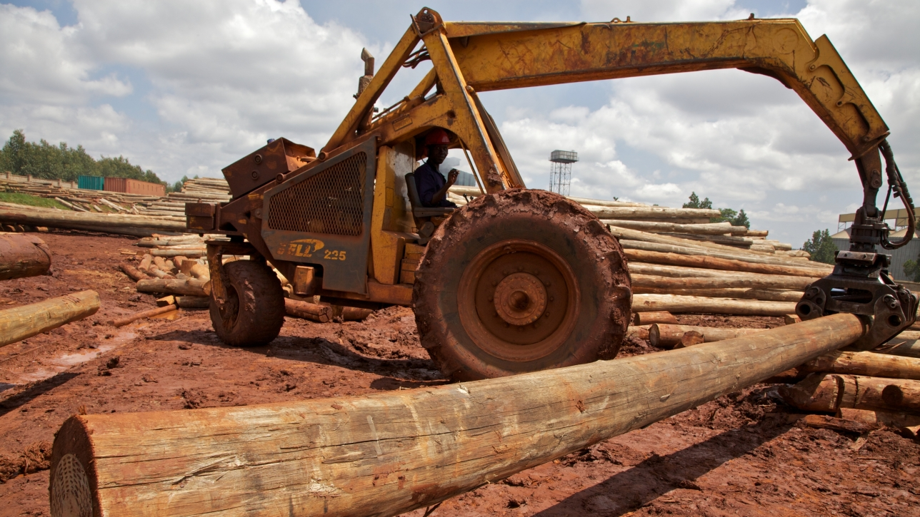 Kenyan Forestry Sector
