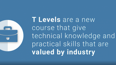 What are T-levels?